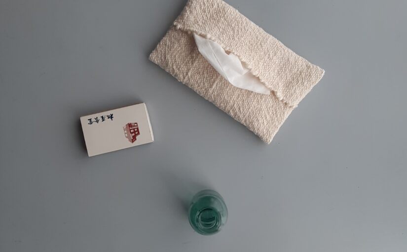 pocket tissues case